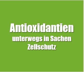 Antioxidantien sind wichtig für unseren Zellschutz und dienen als Radikalfänger