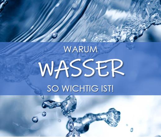 Warum ausreichend Wasser so elementar für unseren Körper ist